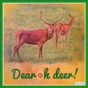 Dear oh Deer Xmas cards designed by Jacqueline Hammond for SmartDeco https://www.smartdecostyle.com/ Shareable Content Copyright©2014 Jacqueline Hammond